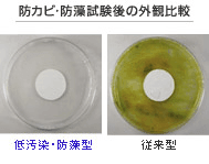 防カビ・防藻タイプ